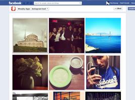 Social Instagram Feed